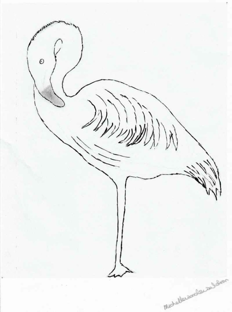 Perhaps you would like to colour in the flamingo