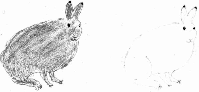 arctic-hare-camouflage-winter-coat-2